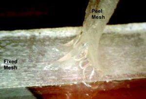 close-up-mucus