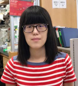 Yanyan Yang, PhD, led the experiments detailed in the PNAS paper.