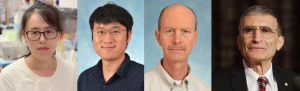 Authors (from left to right): Yanyan Yang PhD, Postdoctoral fellow; Zhenxing Liu PhD, Postdoctoral fellow; Christopher Selby PhD, Research Instructor; Aziz Sancar MD PhD, Distinguished Professor.